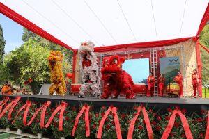 Año nuevo chino Parque OHiggins